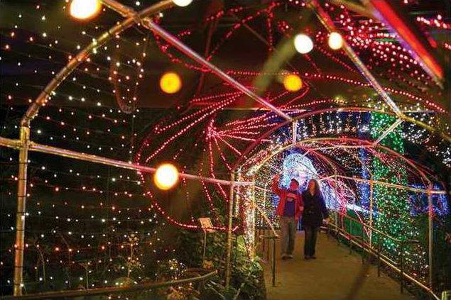 Atlanta Botanical Garden Christmas Lights 2020 World of Coca Cola, Atlanta Botanical Garden go all out for