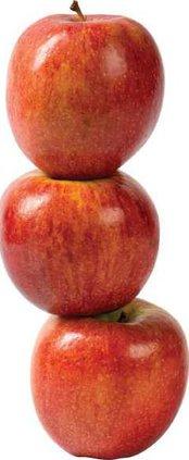 apples WEB