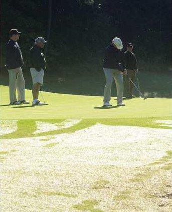 chamber golf 3 jd