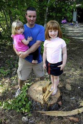 Chopped Tree 3 es