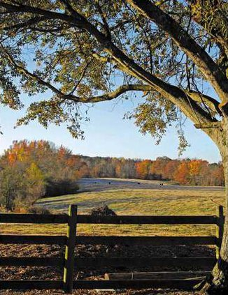 Forsyth County Photo