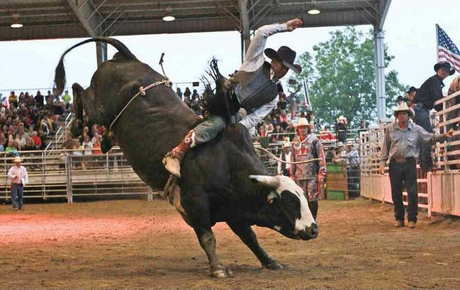 Rodeo WEB