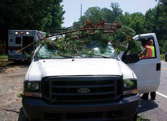 WEB tree on truck 7-7-08