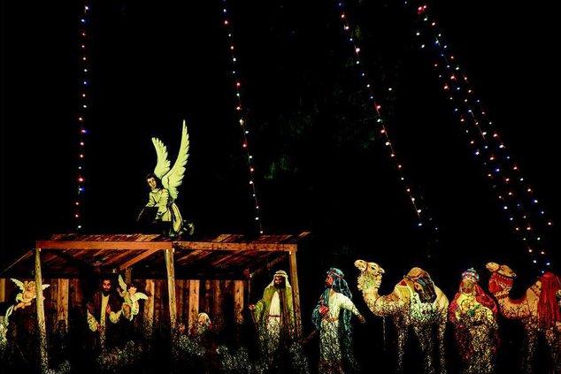 Christmas lights in North Georgia