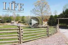 THE LIFE IN MOTION: Chestatee Wildlife Preserve