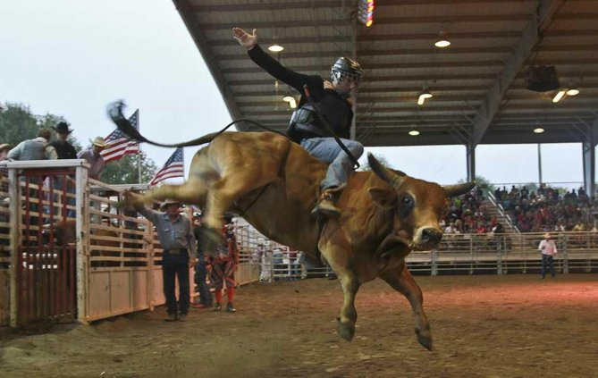 Fair Rodeo 4 web