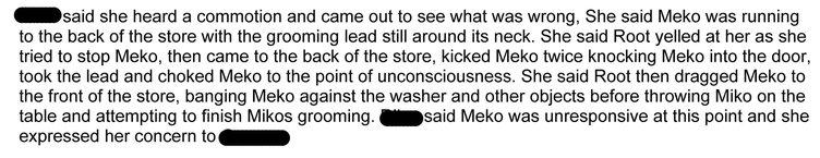 Incident report excerpt
