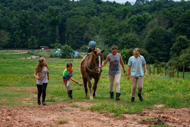 WildeWood Farm Inc.