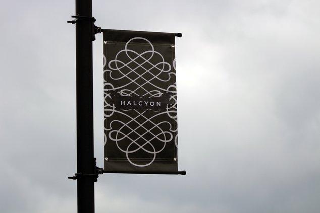 20190920_Halcyon_10_web.jpg
