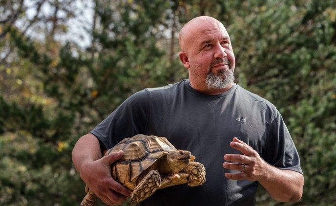 20191106_Tortoises_1_web