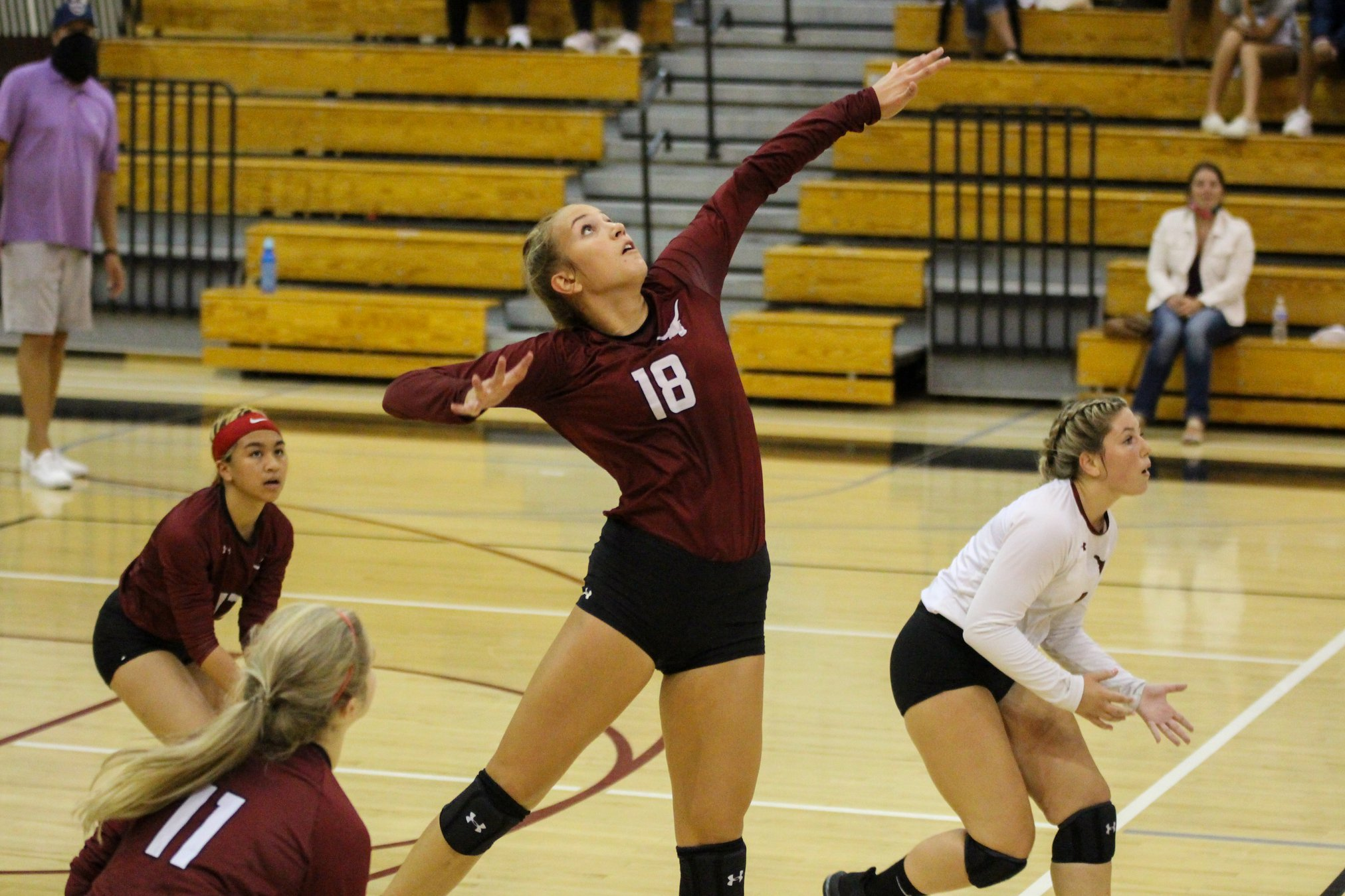 Louisvilles Kayla Cole named Stark County Volleyball