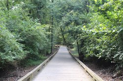 Big Creek Greenway