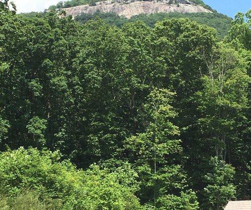 Yonah Mountain