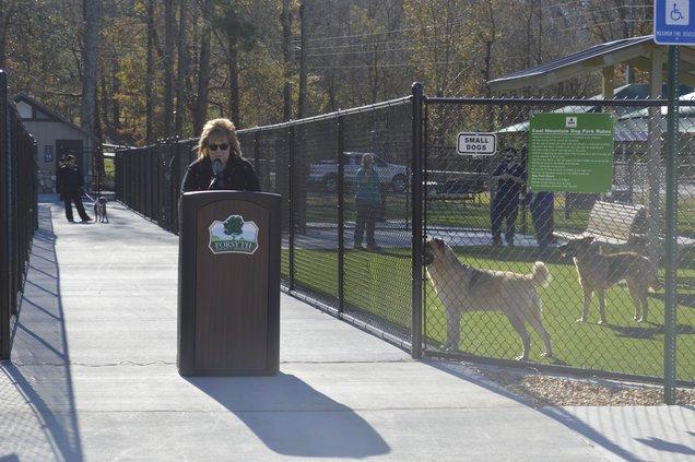 coal mountain dog park