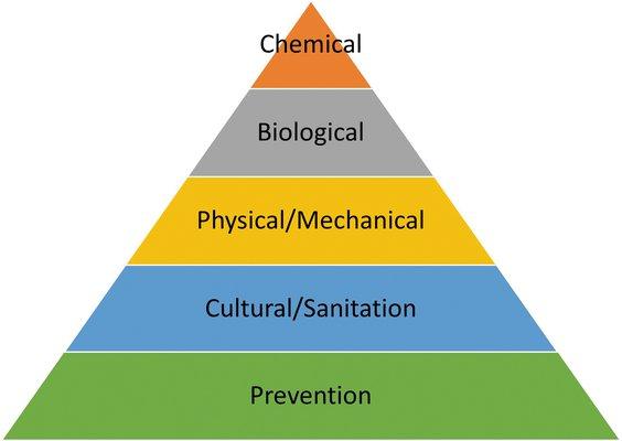 Integrated Pest Management Pyramid