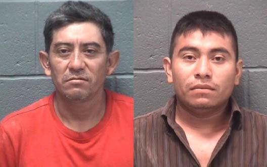 Stabbing Arrests