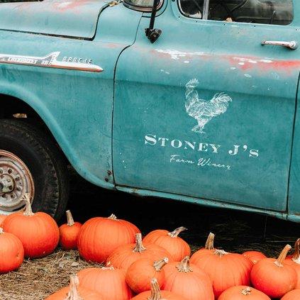stoney j's fall