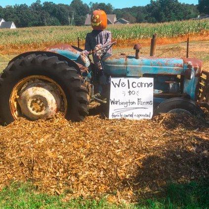 warbington farms fall